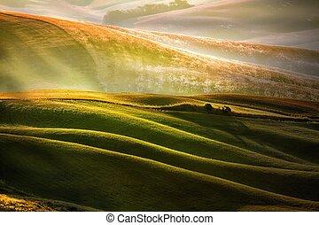 platteland, tuscany, gebied, italië, landelijk