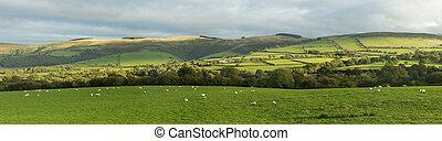 platteland, welsh, aanzicht, garth., panoramisch