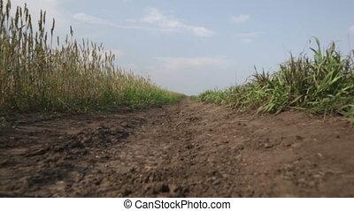 plattelandsweg