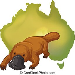 Platypus and Australia map illustration