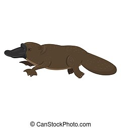 Platypus isolated on a white background. Vector graphics.