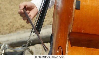 contrabass string musical instrument close-to - play...