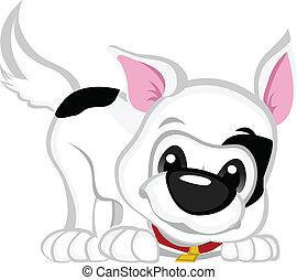 Play Puppy