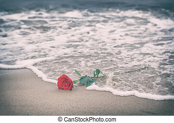 playa., amor, rosa, lejos, vintage., ondas, lavado, rojo