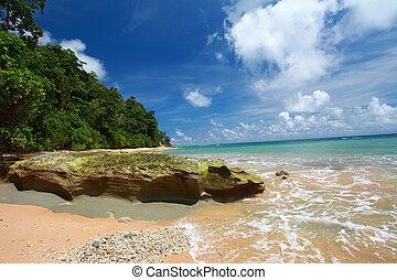 playa, andaman, neil, cielo azul, -, isla, india, islas, ...