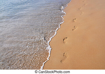 playa, arenoso, huellas