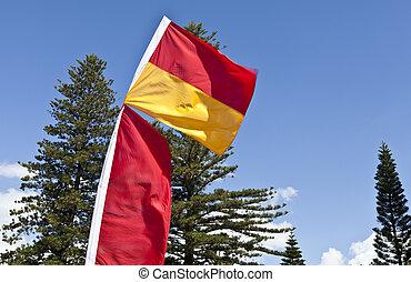 playa, banderas, lifesaver