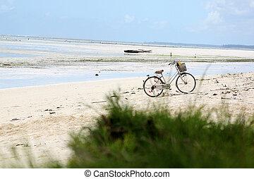 playa, bicicleta, abandonado, zanzibar
