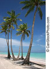 playa blanca, arena, paraíso
