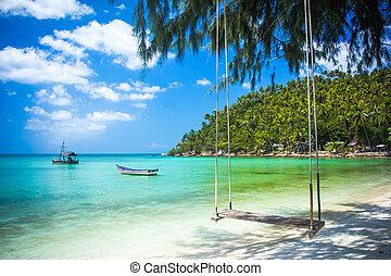 playa, coco, cuelgue desde lo alto, columpio, árbol,...