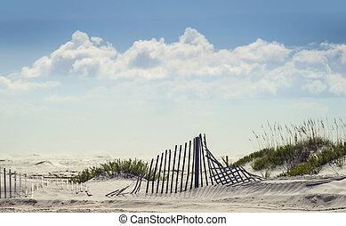 playa, día soleado, brillante