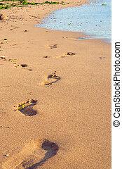 playa de arena, salida, huellas, con, espuma, en, ocaso, tiempo