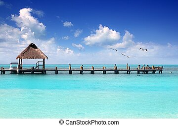playa de caribbean, tropical, isla de contoy, muelle, cabaña