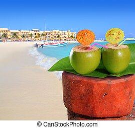 playa del Carmen mexico Mayan Riviera beach coconut cocktail...