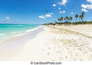 playa, del, este, キューバ