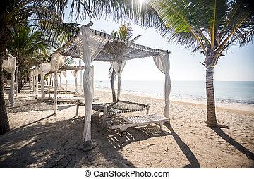 playa, dosel, entre, palmas, por, océano indico