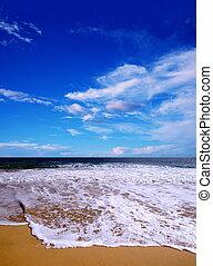 playa, en, el, verano