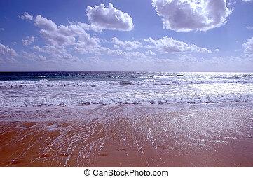 playa, en, invierno