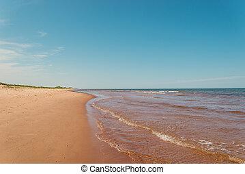playa, en, s., peters, bahía, en, el, norteño, orilla, de, isla príncipe eduardo