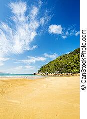playa, en, wilsons, promontorio
