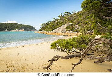 playa, ensenada, refugio
