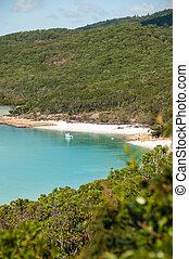 playa, entrada, whitehaven, -, colina, queensland,...