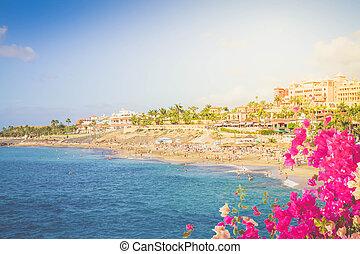 playa Fanabe, Tenerife, Spain