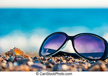 playa, gafas de sol, conchas