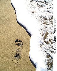 playa, huella