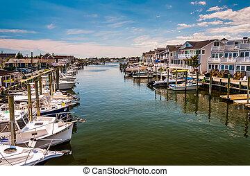 playa, jersey., puerto, punto, agradable, casas, barcos,...