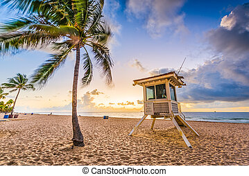 playa, lauderdale, fortaleza
