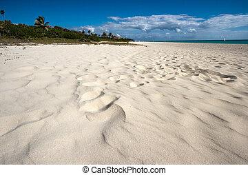 playa, mar caribe