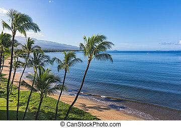 playa, maui, estados unidos de américa, azúcar, kihei, hawai
