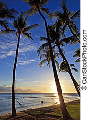 playa, ocaso, maui, pacífico, kaanapali
