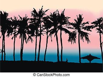 playa, persa, ocaso, golfo
