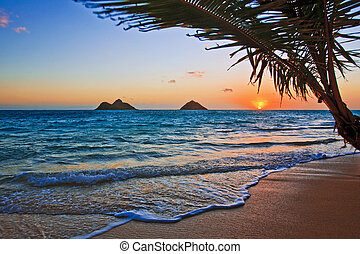 playa, salida del sol, lanikai, hawai, pacífico