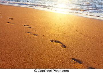 playa, tiempo, ocaso, pasos, onda