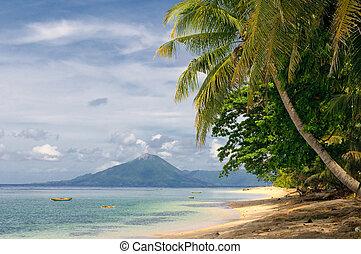 playa tropical, banda, islas, indonesia