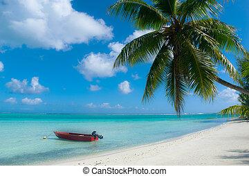 playa tropical, bora