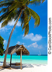 playa tropical, columpio