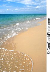 playa tropical, lechada de cal, caribe
