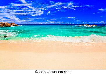 playa tropical, ondas