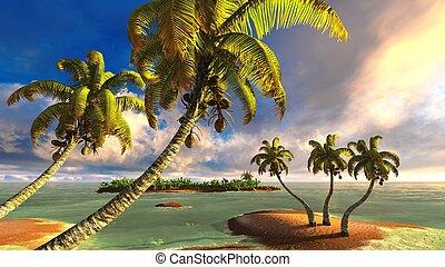 playa tropical, paraíso