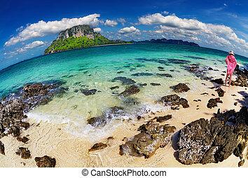 playa tropical, tiro, fisheye