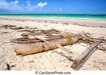 playa, tropical, zanzibar