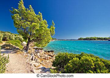 playa, turquesa, idílico, croacia
