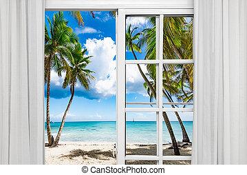 playa, ventana, palma, abierto