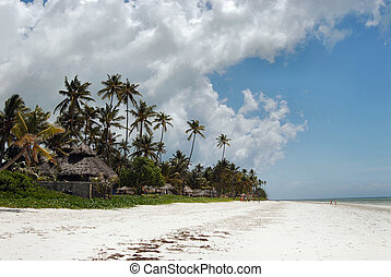 playa, zanzibar