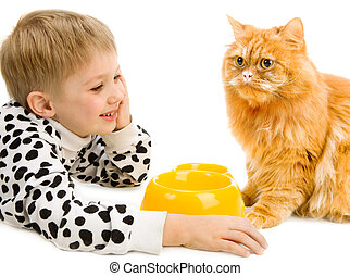 Playful little boy and serious red cat