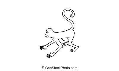 Playful monkey icon animation best outline object on white background